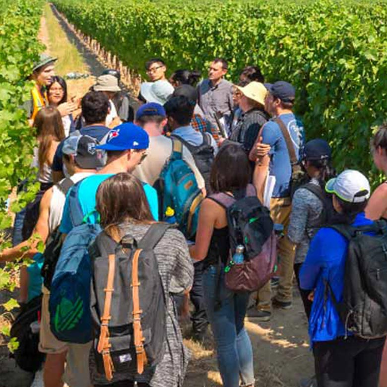Students tour at winery